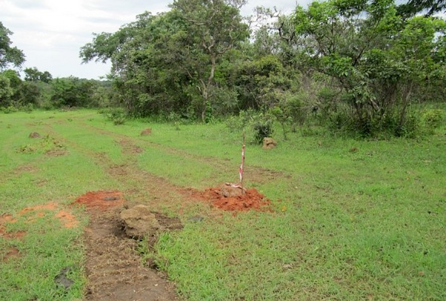 Site post drilling