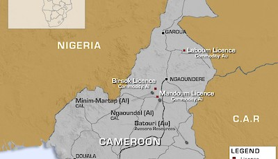 Cameroon overview map