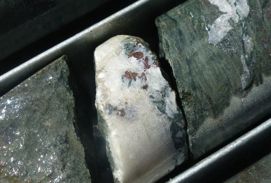 Bornite in SD002 drill core