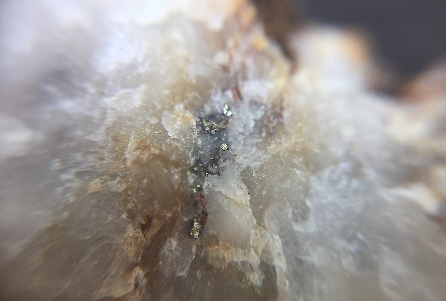 Sulphides in quartz float under hand lens