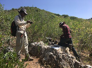 Prospecting and vein mapping