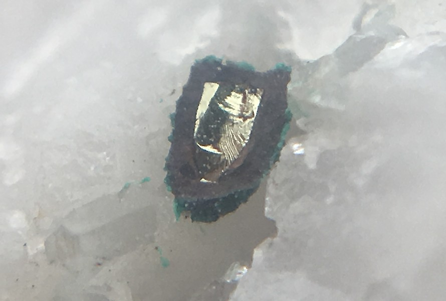 Pyrite shield under hand lens